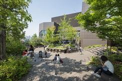 東急プラザ表参道原宿6階屋上テラス「おもはらの森」に期間限定の小さなライブラリーが誕生 「まちライブラリー@OMOHARA文庫」