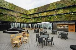 都心商業施設での独自性の高い大規模な壁面緑化を評価 東急プラザ銀座「SEGES(シージェス):都市のオアシス2016」に認定