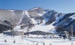 新型コロナ対策強化で利用者の安全性に配慮 全国9箇所のスキー場が営業開始 ~2020-2021ウインターシーズン~