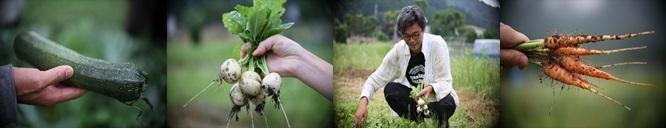農家画像.jpg